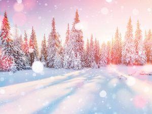 Winterlandschaft Schnee Winter iStock855800518 web